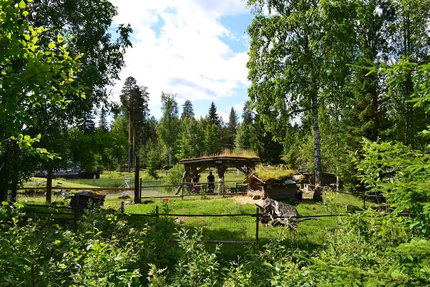 Voit myös nauttia puistossa omia eväitä tai grillata makkaroita ulkogrillissämme puiston ytimessä. Myös tiipiit ovat käytettävissä. Grillipaikoilta löytyy kaikki tarvittava tulen tekoon.