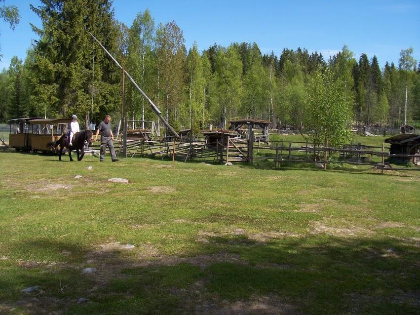 Pääset ratsastamaan Elsa-ponillamme talutuksessa joka päivä tasatunnein klo 12 ja 14. Ei erillistä maksua. Painoraja ratsastukseen on noin 50 kiloa.